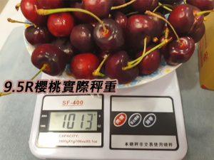 9.5R櫻桃重量
